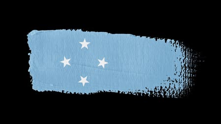articles : Micronesia flag painted with a brush stroke