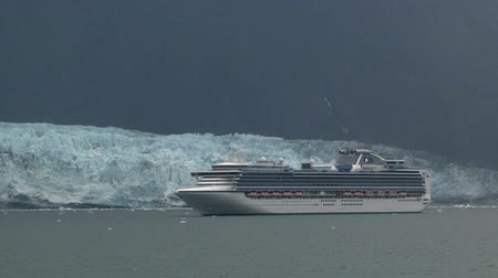killer whale : Cruise ship in Glacier Bay Alaska