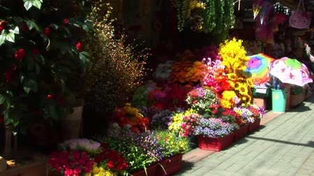 South Korea Flowers in Street Market