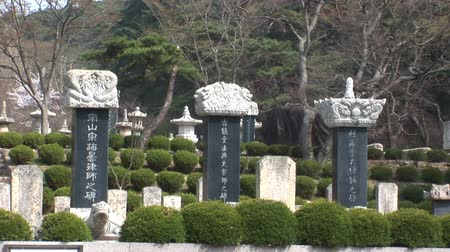 South Korean Temple stones Stok Video