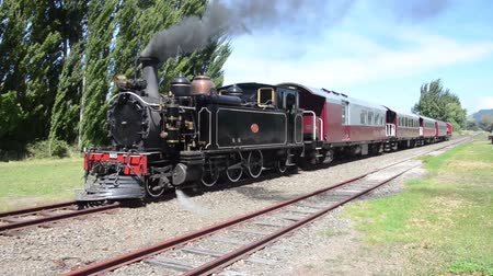 Steam Train in New Zealand Stock Footage