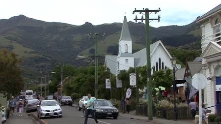boat tour : Akaroa Town New Zealand Stock Footage
