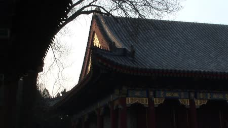 nobreza : Summer Palace building Beijing China