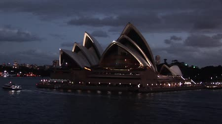 deense dog : Sydney Opera House at Night