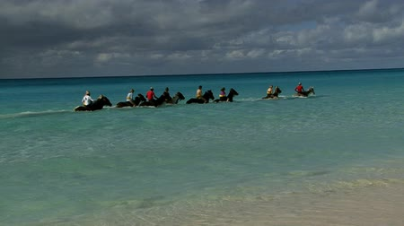 Horses riding through the sea