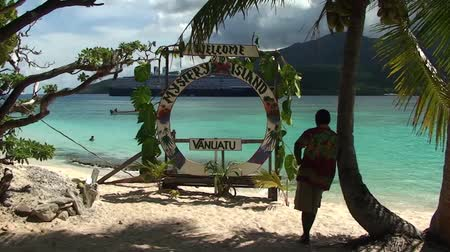 South Pacific Island Man standing by a palm tree Stock Footage