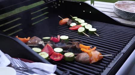 Vegetables cooking on the barbecue Stock Footage
