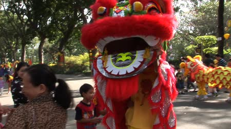 Vietnam Dragon Dance