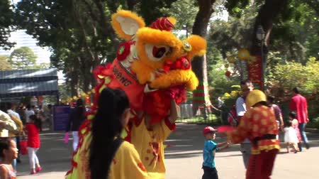 lunar : Vietnam Dragon Dance