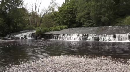 Water River Flowing Stock Footage