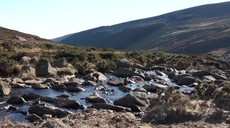 keltisch : Mountain River Wicklow Ireland Stockvideo