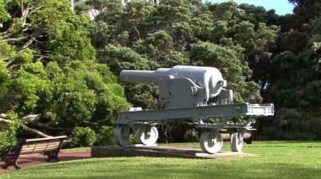 nzl : Cannon in Auckland Park