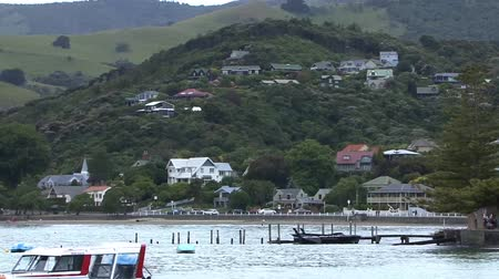 Coastline New Zealand Stock Footage