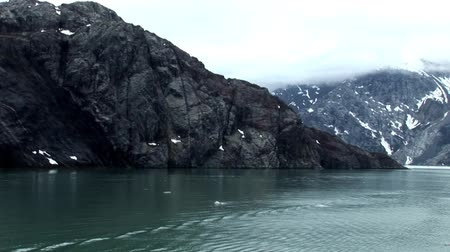 norweger : Glacier Bay Fjorde Alaska Videos