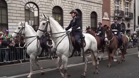 procession : St Patricks Day Horses