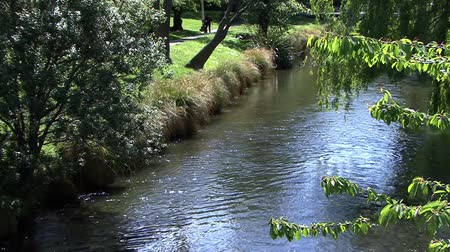 nzl : Christchurch River Stream Stock Footage
