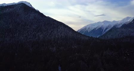 deserted : Beautiful morning panorama on mountains forest Stock Footage