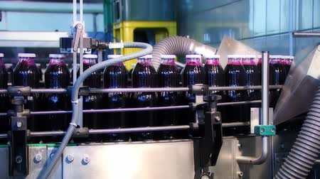 bebida : Bottles full of red juice on production line in the factory Vídeos