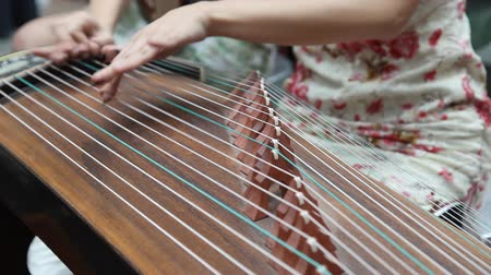 artistas : Chinese girl wearing a cheongsam playing the national instrument - Guzheng.The Guzheng, also called zheng or Chinese plucked zither,is a plucked half-tube zither with movable bridges and strings, belonging to the plucked category of instruments.It is one