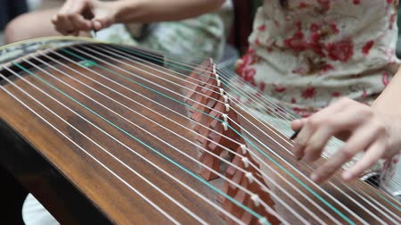 instrumento : Chinese girl wearing a cheongsam playing the national instrument - Guzheng.The Guzheng, also called zheng or Chinese plucked zither,is a plucked half-tube zither with movable bridges and strings, belonging to the plucked category of instruments.It is one