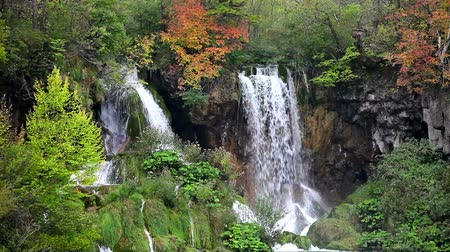 táj : Tranquil waterfall scenery in the middle of autumn forest