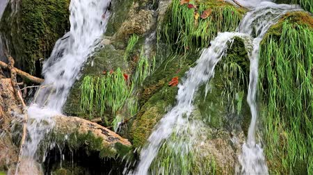 düzgün : Small waterfall flowing through grassy rocks