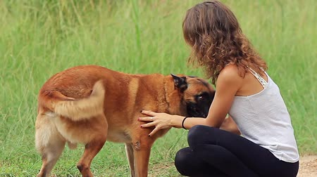 çoban : girl playing with a german shepherd in slow motion