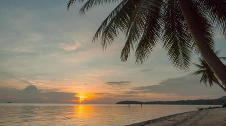 clima tropical : time lapse of the Tropical sunset with palms on the beach