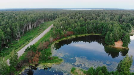 backround : aerial view over a country road near, pine tree forest, a lake on a sunny summer day, in Chelyabinsk region, Russia