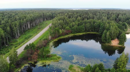 Aerial motion above blue pond near the country road and birds flock flies over pond, Russia Vídeos