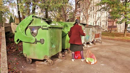 bída : Homeless woman is searching for food in garbage dumpster. Woman in poverty is searching something in container.