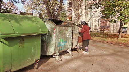 tramp :  Woman in poverty is searching something in garbage container.