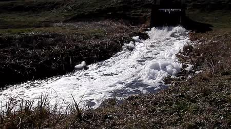 novela : Pollution from sewage discharged with channel in to nature