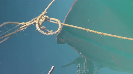 knotted : Rope is floating in the sea water View on the ropes for dock fastening who float in sea water. Stock Footage