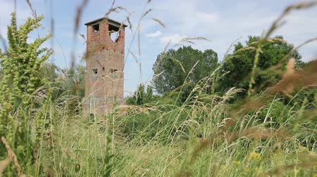 genel bakış : Ancient abandoned lookout tower overgrown among grass vegetation. Old brick watch tower is overlooking ancient border crossing from Europe to Asia.