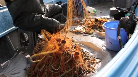 výbava : Fisherman is empty fish from net in his small boat. Fisher in rubber trousers and boot is sitting in his boat and pile up fishing net for angling at open sea. Photo - JPEG video Dostupné videozáznamy