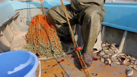 výbava : Fisherman is empty fish from net in his small boat. Fisher in rubber trousers and boot is sitting in his boat and pile up fishing net for angling at open sea.  H.264 video codec Dostupné videozáznamy