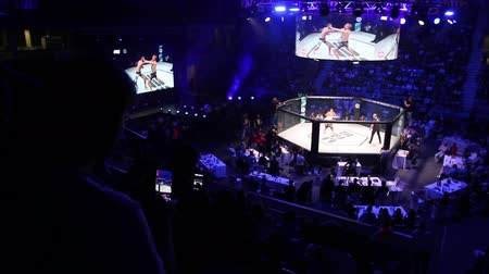 torcendo : Zrenjanin, Vojvodina, Serbia October 19, 2019: MMA XXIV SBC Tournament Silhouette, shadows of people audience at mma fight tournament, octagon stage, blurred background. Photo - JPEG video codec