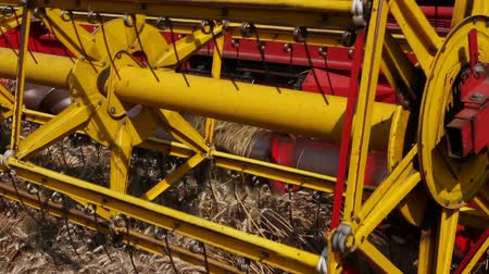 mechanization : Combine harvester harvest ripe wheat. Agricultural combine is cutting and harvesting wheat on farm fields. Photo - JPEG video codec