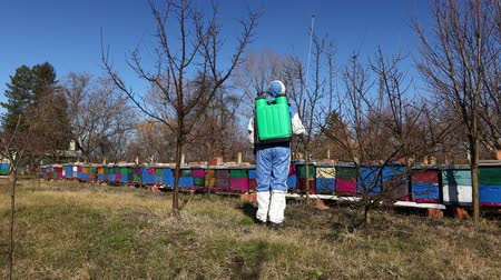 колония : Farmer in protective clothing sprays fruit trees in orchard using long sprayer to protect them with chemicals from fungal disease or vermin at early springtime, near bee colony, apiary.