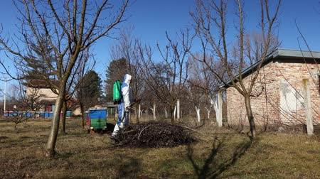 plagas : Farmer in protective clothing sprays fruit trees in orchard using long sprayer to protect them with chemicals from fungal disease or vermin at early springtime.