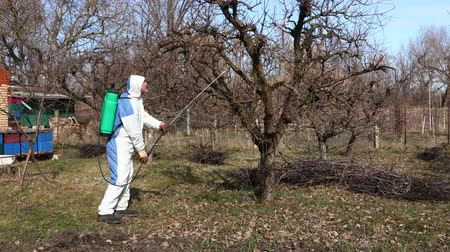 macacão : Farmer in protective clothing sprays fruit trees in orchard using long sprayer to protect them with chemicals from fungal disease or vermin at early springtime, near bee colony, apiary.