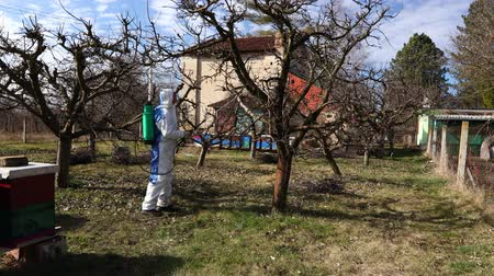 haşarat : Farmer in protective clothing sprays fruit trees in orchard using long sprayer to protect them with chemicals from fungal disease or vermin at early springtime, near bee colony, apiary.