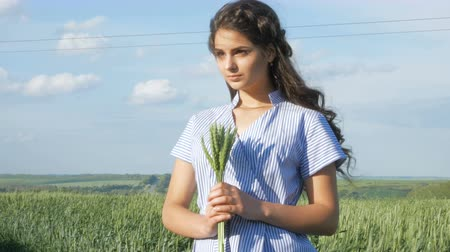 pszenica : The concept of peace, no war. Woman holding wheat spike. Three beautiful lady or women in a wheat field Wideo