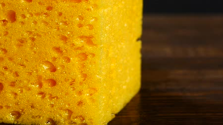 lifler : Sponge texture closeup background Stok Video