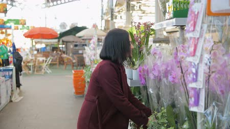 florista : Woman Buying Flowers in a Sunlit Garden Shop. 4K. Young woman shopping for decorative plants on a sunny floristic greenhouse market. Home and Garden concept.