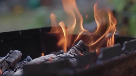 kütük : Slow motion fireplace for bbq, nature yellow fire. Burning wood in the fireplace close up Stok Video
