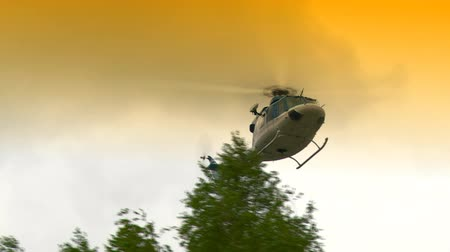 Helicopter flying over trees. Стоковые видеозаписи