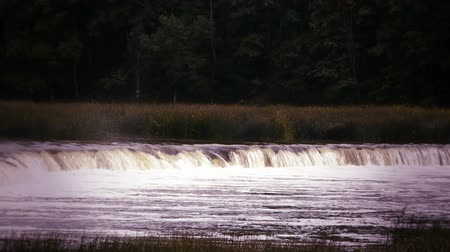 ribeiro : HD - waterfall on the river_scene2
