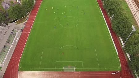 penas : HD - Soccer field. Top view Stock Footage